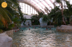 AquaMundo Center Parcs Bois aux Daims