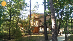 Cabane dans les arbres Center parcs